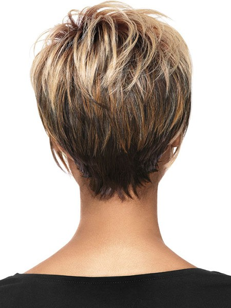Blonde-to-Dark Back View of Short Haircuts