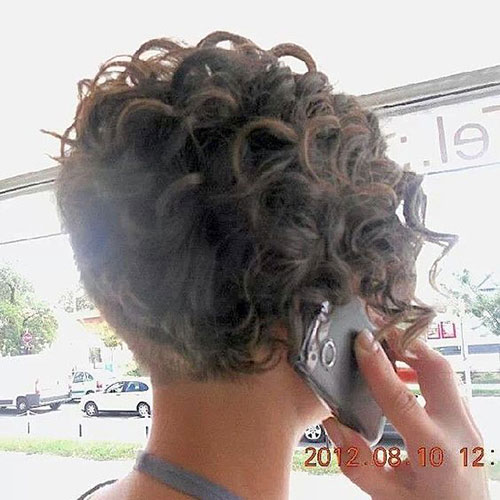 Back-View Very Short Curly Hairstyles for Smart Ladies