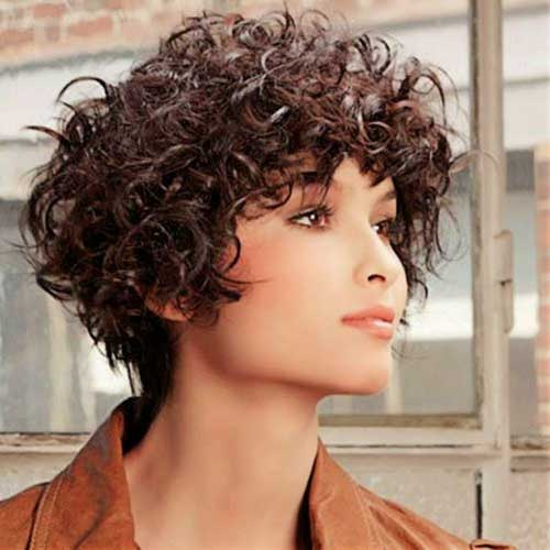 Short-Bob-for-Frizzy-Curly-Dark-Brown-Hair Short Haircuts For Curly Frizzy Hair