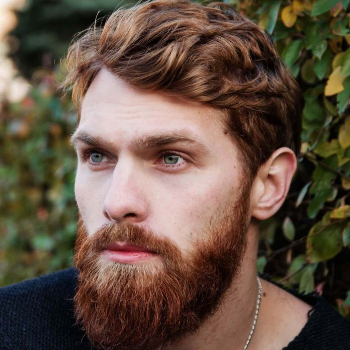 Natural-Brown-Hair Cool and Charming Natural Hairstyles for Men
