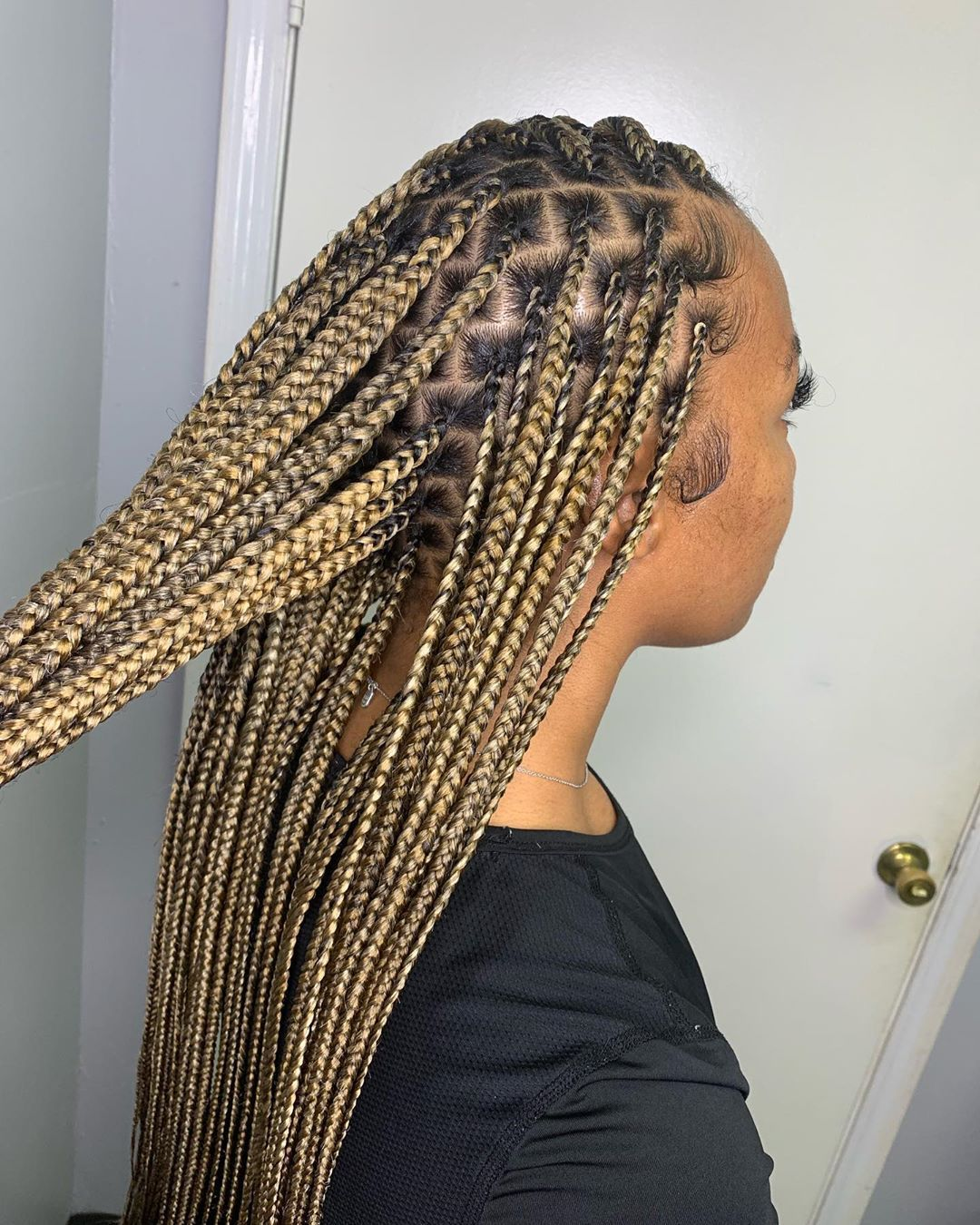 Long-Box-Braids-with-Golden-Highlights Braids Hairstyles 2020 for Ultra Stylish Looks