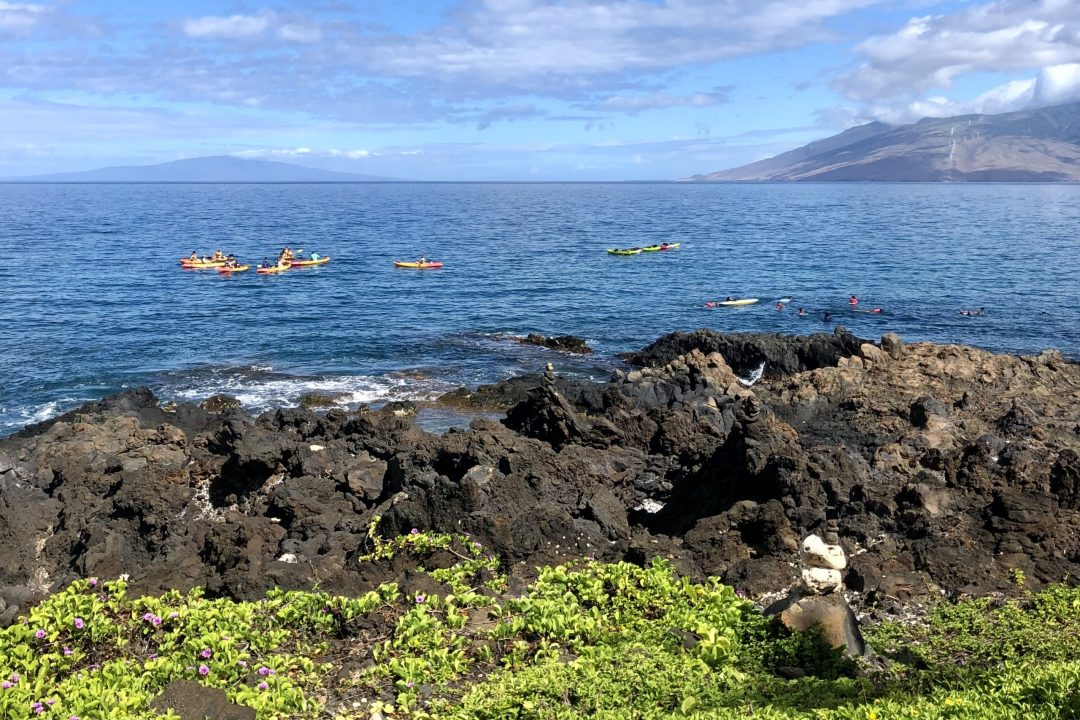 Water sports at the Wailea Beach Resort by Marriott