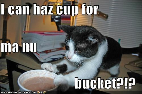I can haz cup for ma nu bucket?!?