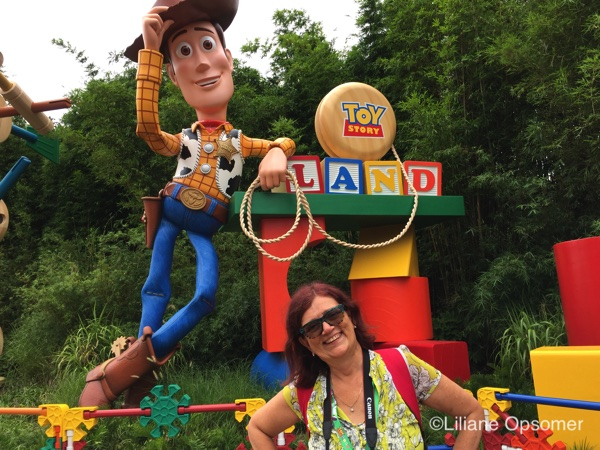 Toy Story Land Fun Facts