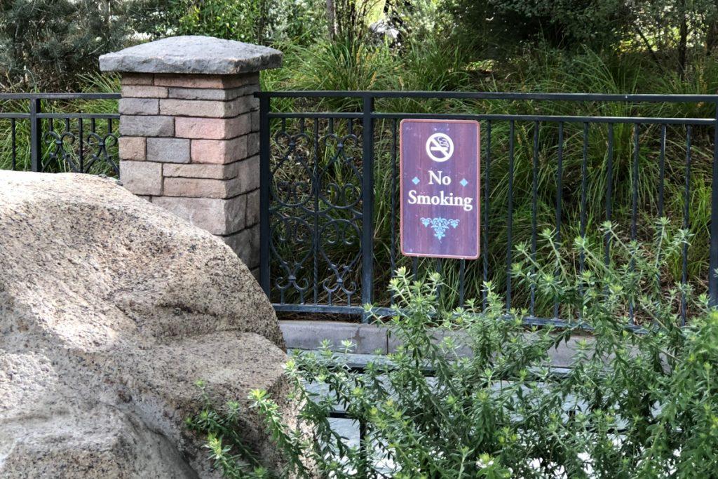 Disney no smoking