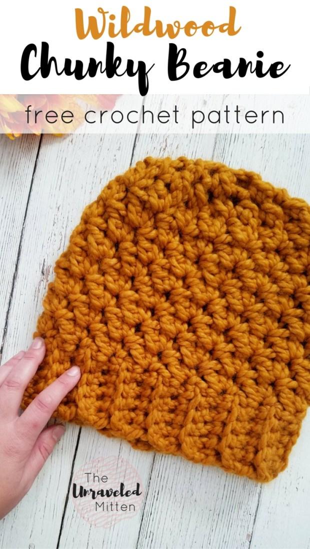 Wildwood Chunky Crochet Beanie The Unraveled Mitten