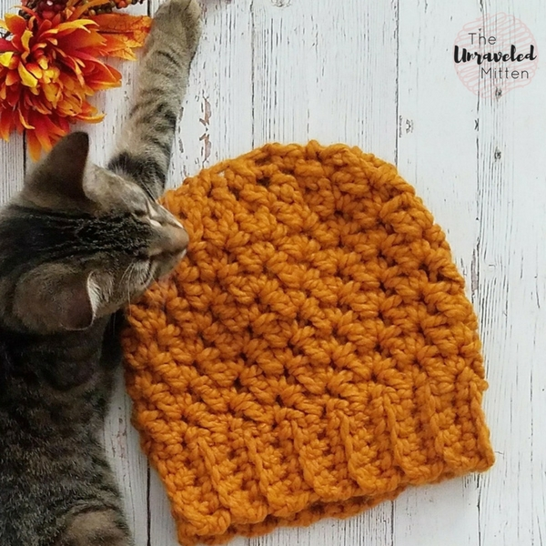 Wildwood Chunky Beanie   Last Minute Christmas Gift   Free Crochet Pattern   The Unraveled Mitten