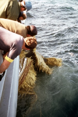 330-CFD-DN-ST-86-06837: Crew members aboard the salvage ship USS PRESERVER (ARS8) haul a piece of debris aboard the ship during recovery operations for the Space Shuttle Challenger.