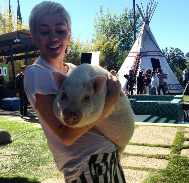 Miley and her live pet