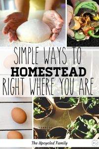 Are you wanting to be more self-reliant or even dream of homestead living but think it's not possible because of where you live? Think again! Homesteading and self-reliance are on the rise try these 6 ways to more self-reliant wherever you are! #selfreliant #living #simple #howtomake #simpleliving #homesteading #life