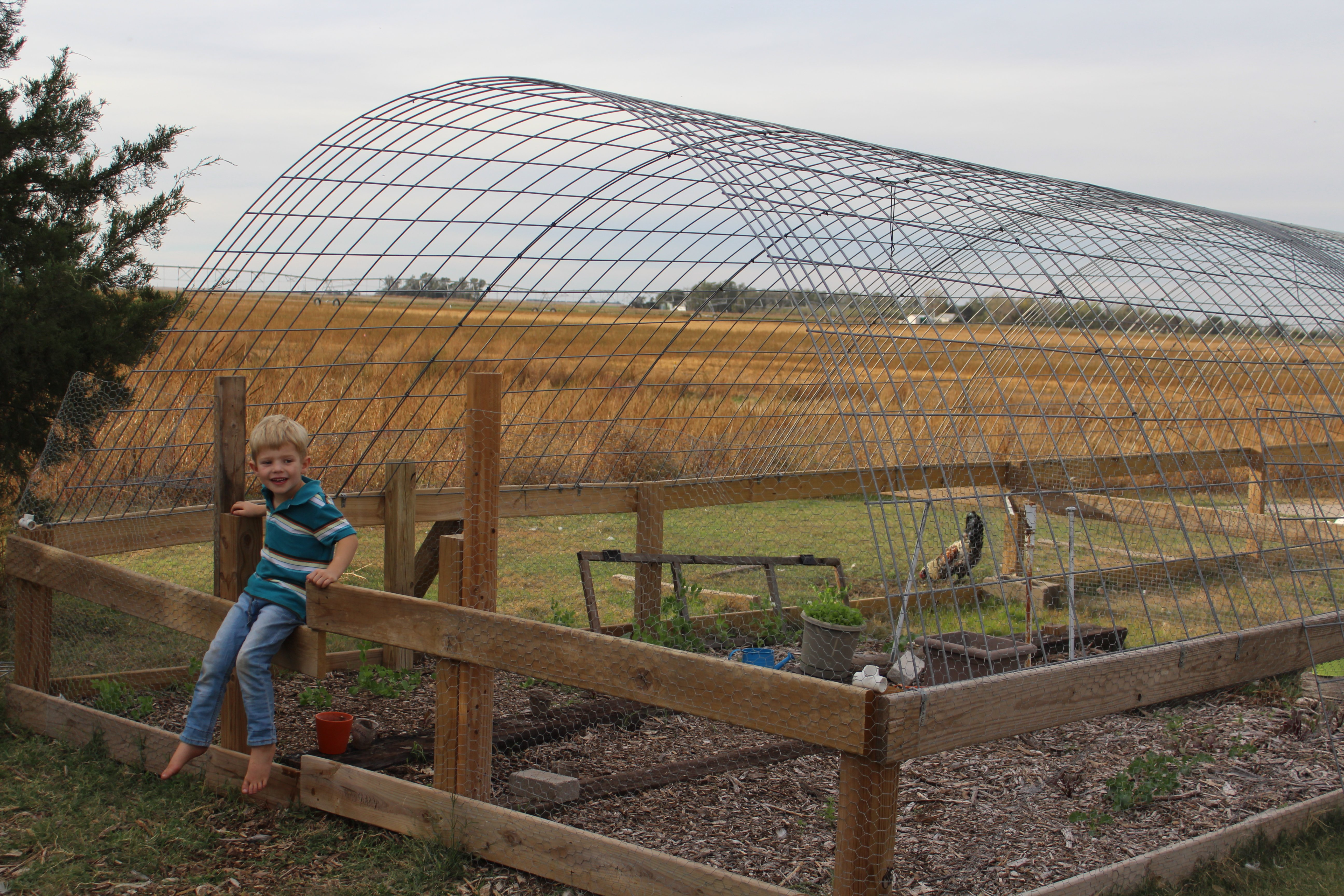 Greenhouse making