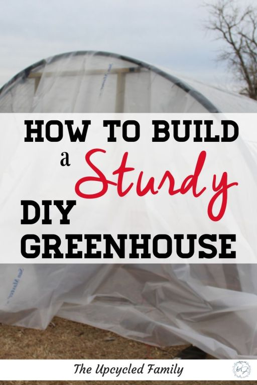 Do you dream of a way to garden year round? Want a greenhouse but feel they are too expensive? Do cheap made greenhouses not stand up to the elements in your area? Try this DIY greenhouse idea made with in ground posts and flexible livestock panels to build a greenhouse that is sturdy, flexible and still cheap. #diygreenhouse #cheap #forwinter #yearround #ideas #large #small #howtobuild #homemade #hoop #budget #wintergardening #homesteadingideas