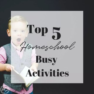 homeschool busy activities