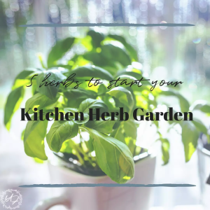 kitchen herb garden
