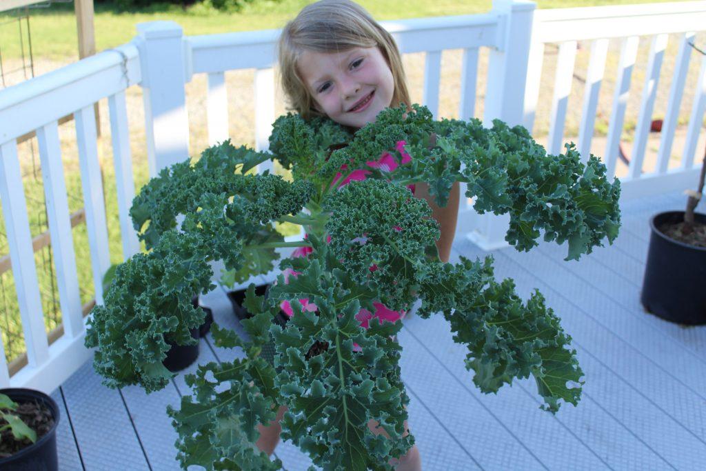 Young girl holding garden fresh kale