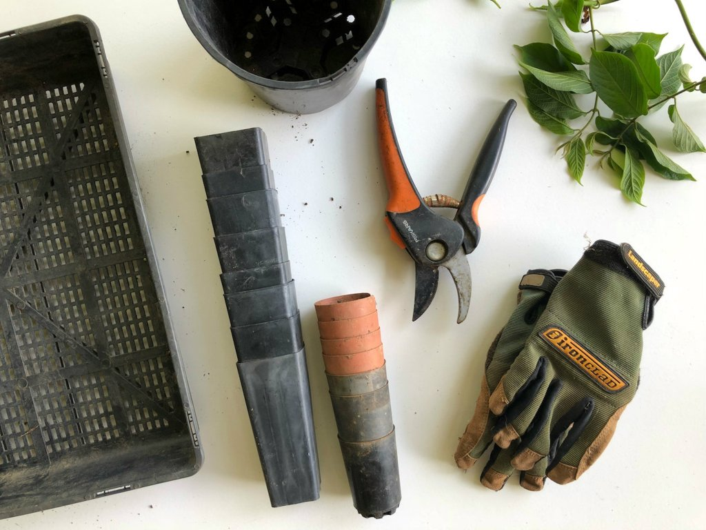 8 must have gardening tools for beginners
