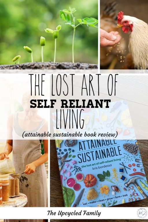 attainable sustainable book review