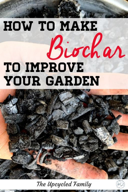 How to make biochar to improve your garden