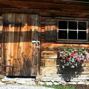 homestead life