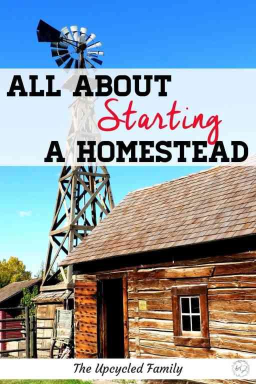 Starting a Homestead