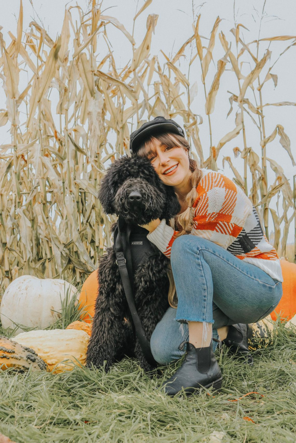 dog, puppy, labradoodle, Fall, Autumn, puppy's first Fall, Indio, The Urban Darling, lifestyle blog, Portland, OR.