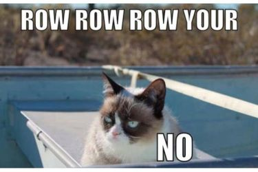 grumpy cat, the urban dater, NO. grumpy cat,