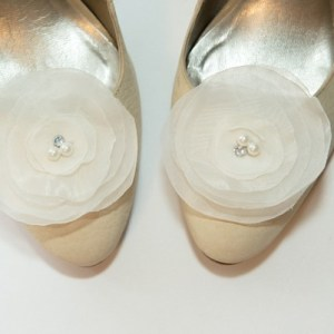 clipsuri-pantofi_sash036b-600x401