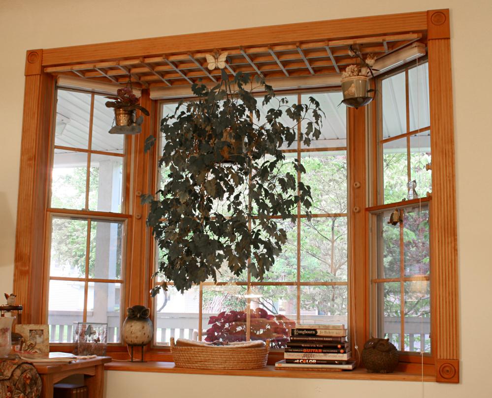 Hang Plants Window