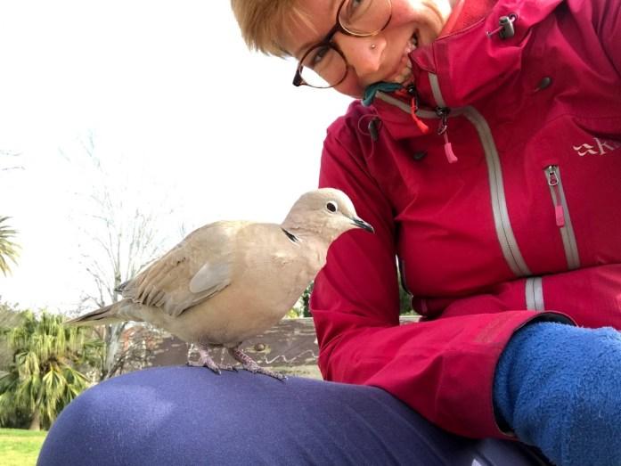 Bird Friend in Valencia