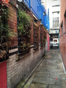 Dublin by Foot - A free walking tour with Dublin Discovery Trails   Temple Bar   The Urban Wanderer   Sarah Irving