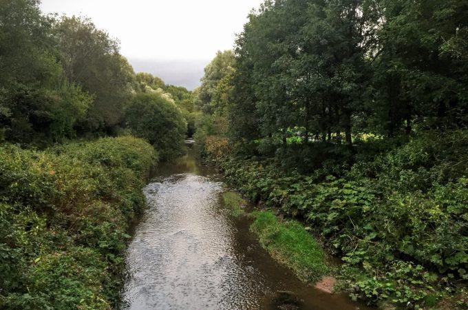 A quick wander around Clayton Vale