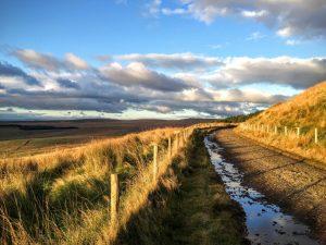 Winter Hill and Rivington Pike - an Autumn wander   Bolton, Lancashire   Under 1 hour from Manchester   The Urban Wanderer   Sarah Irving