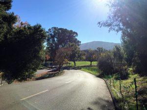 My adventure to Vasona Lake County Park, Los Gatos, California | Outdoor Blogger | Manchester Blogger | Get Outside Manchester | Sarah Irving | The Urban Wanderer