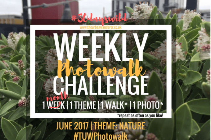 #TUWPhotowalk goes Monthly for June to support #30dayswild