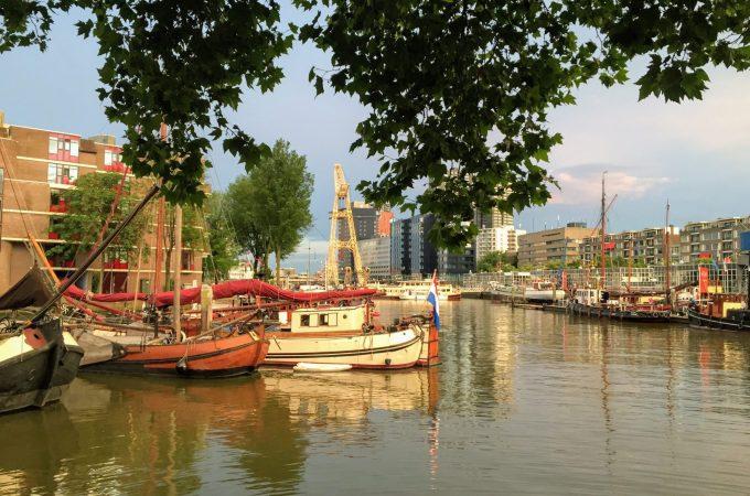 Reminiscing over Rotterdam