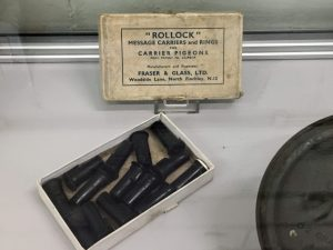 Inside the display cabinet showing the leg tubes for sending messages with pigeons