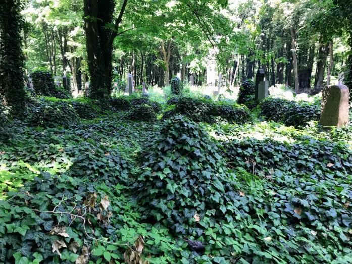 Łódź Jewish Cemetery 4