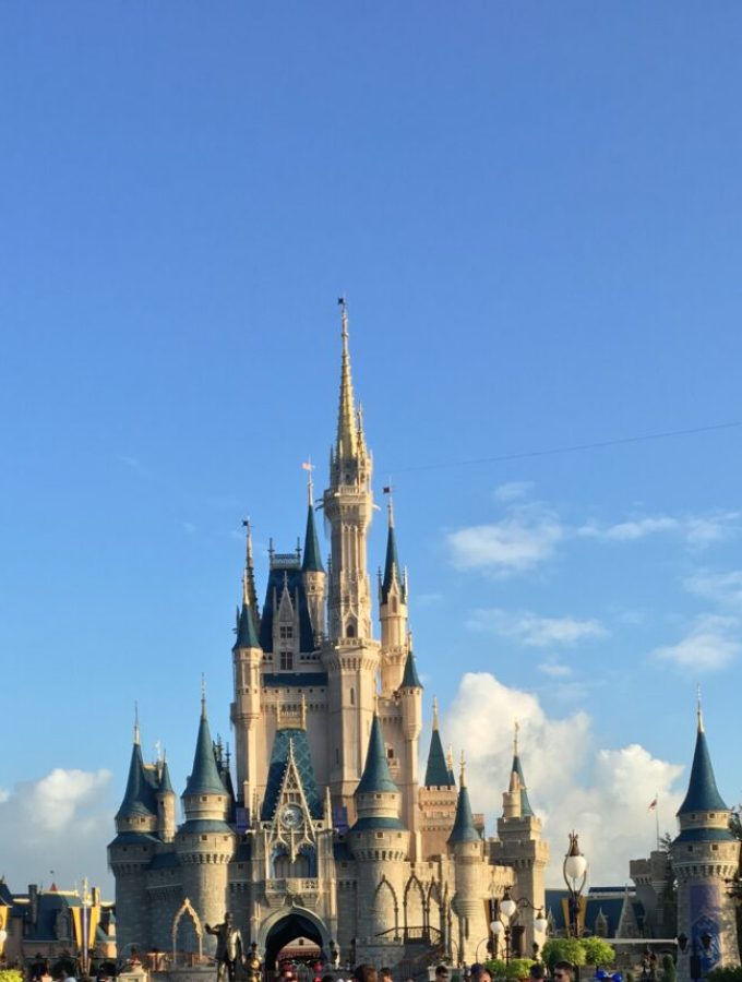 Magic Kingdom In One Day