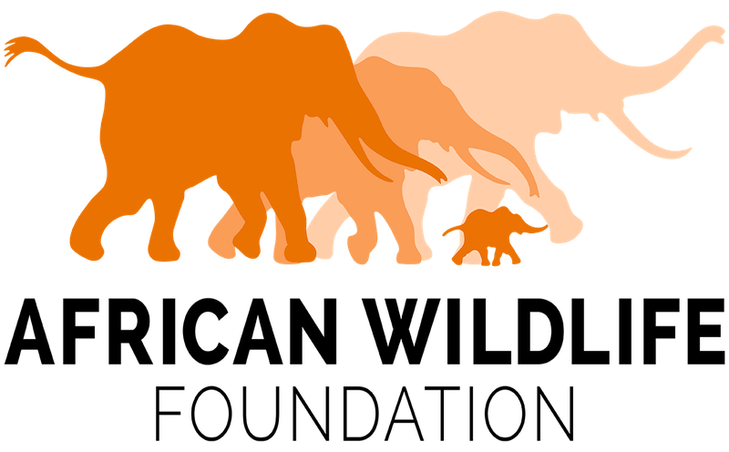 African Wildlife Foundation logo: four orange silhouettes of elephants of different sizes.
