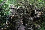 Wooden walkways left behind by a film crew