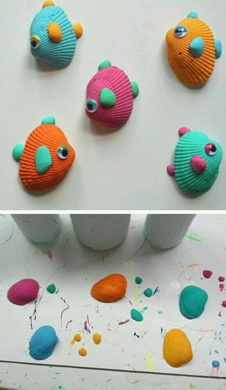 fish-of-shells