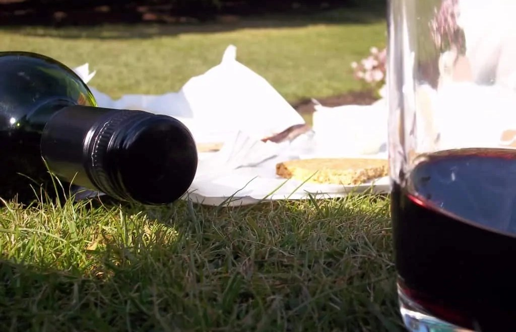 Cheese and wine picnic in the sun