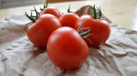 Tomatoes from Clyde Valley