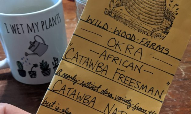 Experimental Farm Notes May 2020 – Okra Germination | Sweet Potato Greens