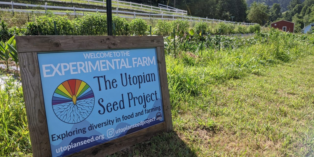 Experimental Farm Notes July 2020 – Flowers are forming on legumes, squash and potatoes.