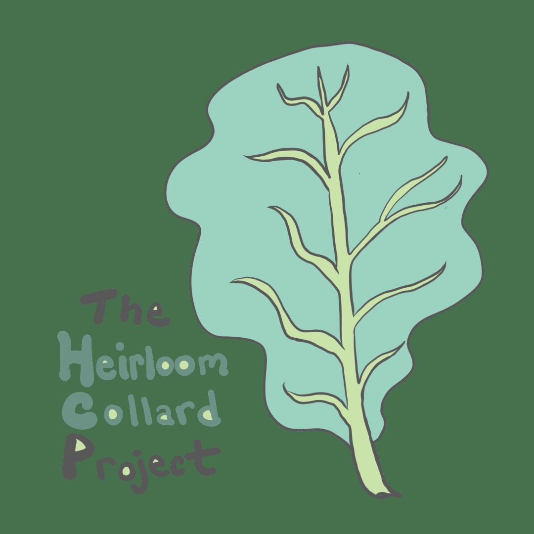 The Heirloom Collard Project