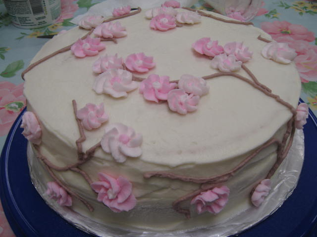 Foodie Friday  Wilton Basic Cake Decorating  Class Four    The Vaca Loca Like