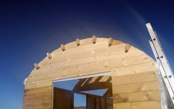 The back wall now has the end of a rafter sticking out through each notch.