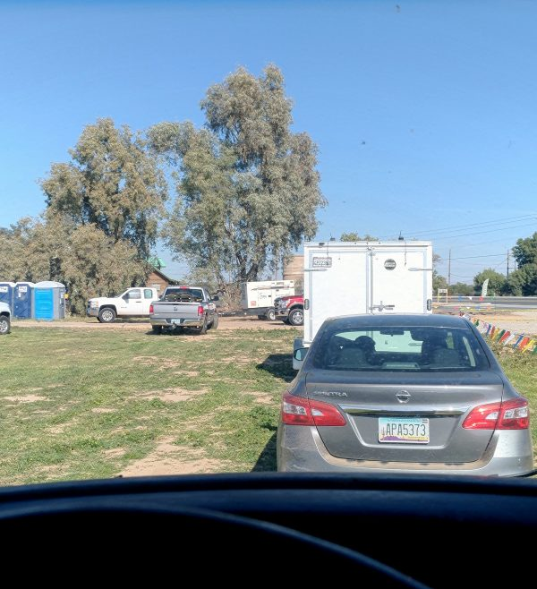 The view from inside the van: a line of cars & trucks waiting to get into Estrella, with a couple trees in the background & above that, blue sky.