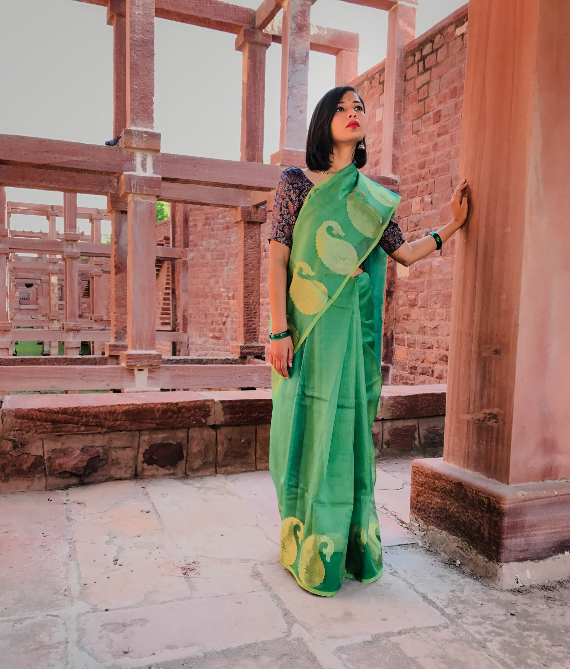 Celebrating the Saree - Green Supernet saree,
